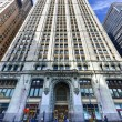 Постер, плакат: Woolworth Building New York