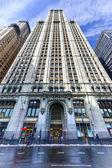 Woolworth Building - New York — Foto de Stock