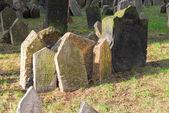 Jewish Cemetery - Prague, Czech Republic — Zdjęcie stockowe