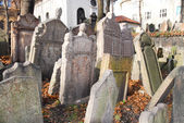 Jewish Cemetery - Prague, Czech Republic — Stock Photo