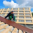 Worker puts the metal tiles on the roof — Stock Photo #54313525