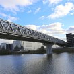 Myakininskiy (Mitinskiy) Metro bridge — Stock Photo #56537729