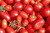 Background of juicy tomatoes — Stock Photo
