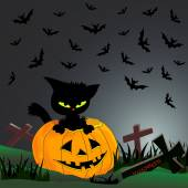Cat, pumpkin, cemetery — Stock Vector