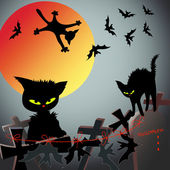 Cats and bats — Stock Vector
