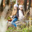Two Beautiful girls wearing a beret sitting on log posing — Stock Photo #67988203