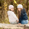 Two Beautiful girls wearing a beret sitting on log posing — Stock Photo #67988213