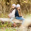 Two Beautiful girls wearing a beret sitting on log posing — Stock Photo #67988229