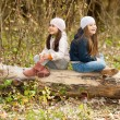 Two Beautiful girls wearing a beret sitting on log posing — Stock Photo #67988235
