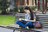 Student sitting on wood bench and reading blue book, outdoor. — Stock Photo