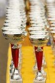 Champion trophies — Stock Photo