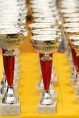 Silver champion trophies — Stock Photo