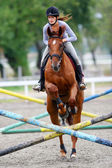 Horse jumping hurdles — Stock Photo