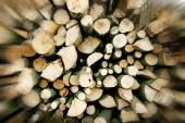 Pile of firewood digitally altered — Stock Photo