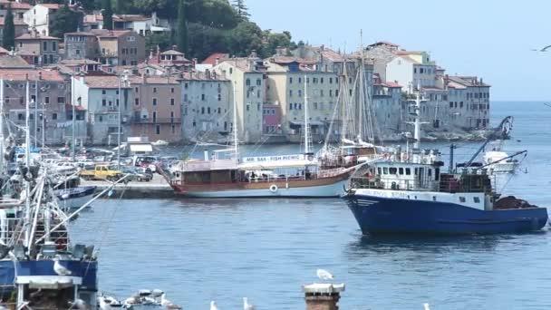 Boats at dock in Rovinj — Vidéo