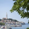 Old town with Saint Eufemia church in Rovinj — Stock Photo #72730785