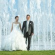 Bride and groom in front of water fountain — Stock Photo #79816800