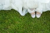 Birds eye view of brides shoes — Stock Photo