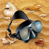 Set of a diving mask, flippers and sea-shells — Stock Vector