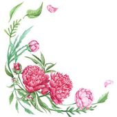 Peony Summer Floral Corner — Stock Photo