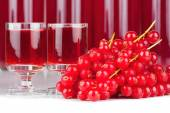 Red currants and liqueur in a glass — Foto de Stock