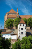 The Stephans Cathedral in Breisach — Stock fotografie