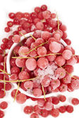 Top view of frozen currants with stems — Stock Photo