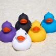 Five rubber ducks on the beach — Stock Photo #77916810