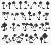 Vector set of solar palm beach — Stock Vector