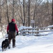 Man walking with dog in snow — Stock Photo #72716781