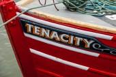 Tenacity — Stock Photo