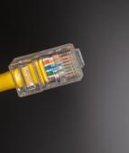 Lan cable close up — Stock Photo
