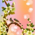 Sakura , spring , postcard . — Stock Vector #52281047