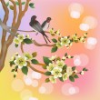 Evening in the garden blooming cherry and birds sing — Stock Vector #53751201