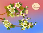 Evening in the garden blooming cherry — Stockvector
