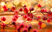 Christmas berries decorations — Stock Photo