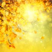 Abstract autumnal background — Stock Photo