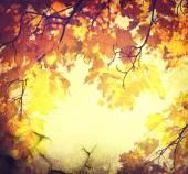 Abstrato de outono — Fotografia Stock