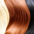 Hair colors palette. — Stock Photo #61540579