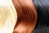 Hair colors palette. — Stock Photo