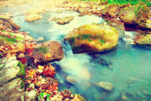 Mountain river with stones. — Stock Photo