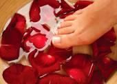 Female legs  with rose petals — Stock Photo