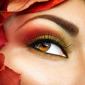 Autunno make-up per gli occhi marroni. — Foto Stock