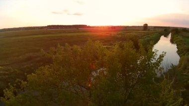 Beautiful nature scene. — Stock Video