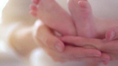 Baby feet in mother hands. — Stock Video