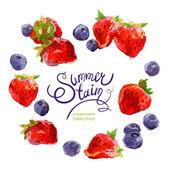 Watercolor berries — Stock Vector
