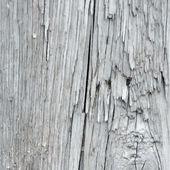 Vector houtstructuur — Stockvector