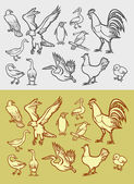 Poultry icons sketch vintage, black and white style. — Stock Vector