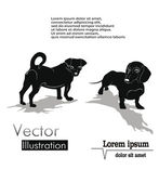 Silhouettes of dogs — Stock Vector