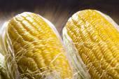 Corn on dark background — Stock Photo